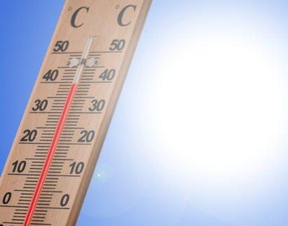 Sommer - Sonne - Hitzschlag